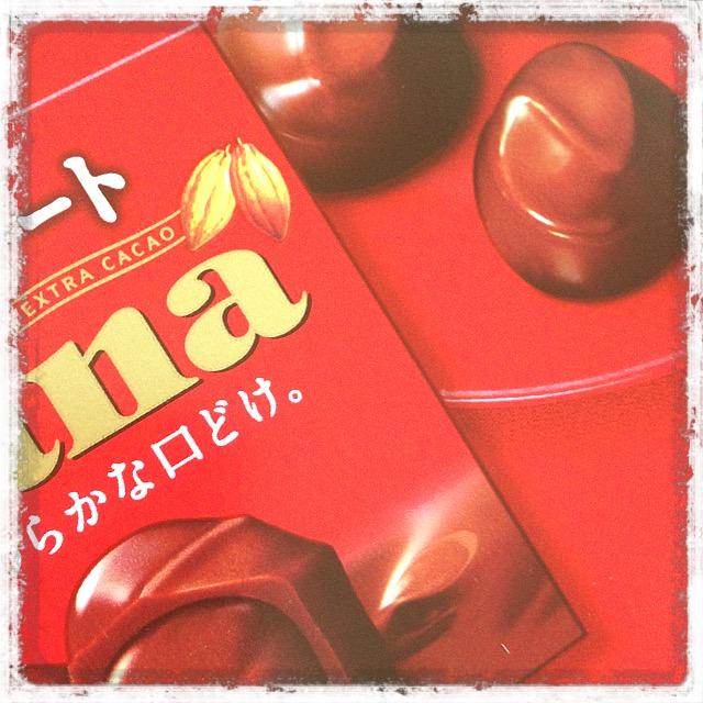 チョコレート_発酵食品