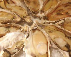オイスターバー牡蠣